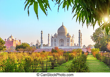 Taj Mahal and the garden in a sunny day, Agra, India