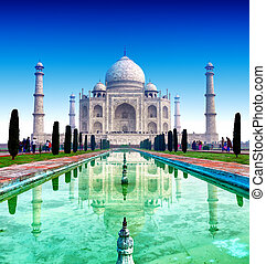 taj mahal, palais, dans, india., indien, temple, tajmahal