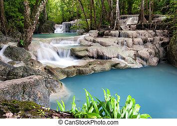 tajlandia, na wolnym powietrzu, fotografia, od, wodospad, w, deszcz, dżungla, forest.