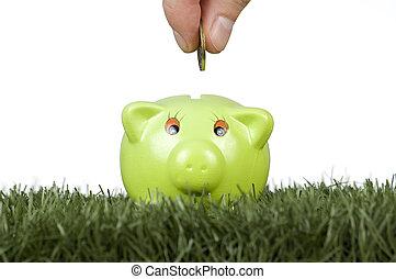 takarékbetét pénz, képben látható, egy, piggy-bank