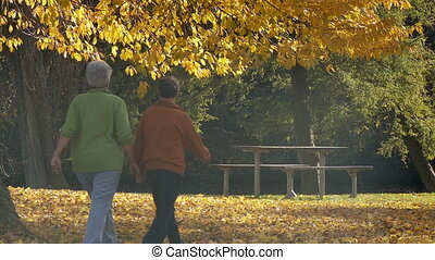 take a walk in autumn part I