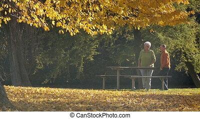 take a walk in autumn part II