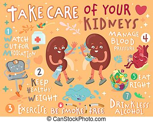 Take care of your kidneys. Creative landscape poster in modern style. Editable vector illustration. Stay healthy and happy. Medical, healthcare, hepatology concept. Useful information. Graphic design.