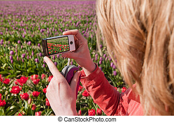 Taking pictures in Holland - Woman is taking pictures in the...