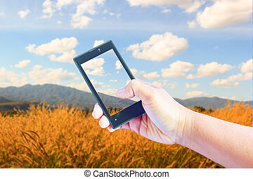 Taking pictures landscape with mobile phone in the nature background.