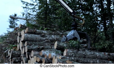 Taking piles of trees and carrying it off. The backhoe took some trees piled up near the forest and took it off. Lifting set of logs cut from trees and arranging it on a truck.