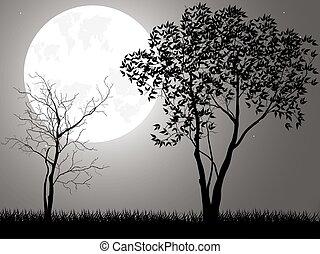takken, boompje, maan, vector, achtergrond, nacht