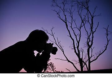 takken, boompje, ondergaande zon , gedurende, silhouette, schietende , man