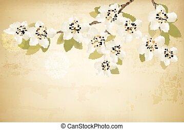 takken, lente, achtergrond., vector., ouderwetse , bloemen