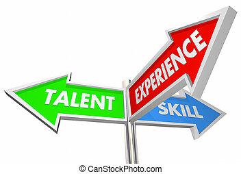 talent, kandidaat, illustratie, 3, ervaring, weg, tekens & borden, vaardigheid, best, 3d