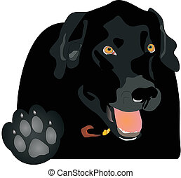 "Black Labrador holding up the paw, saying ""Talk to the Paw!"" Play on words.."
