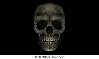 skull - talking skull