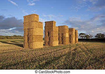 tall bales in evening light