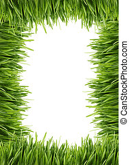 tall grass border or frame