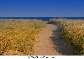 Tall grass by lake - Grass lands along lake Superior shore ...