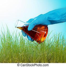 Tall grass green watered red liquid