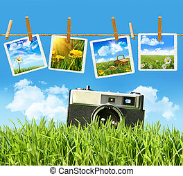Tall grass with old vintage camera and pictures on...