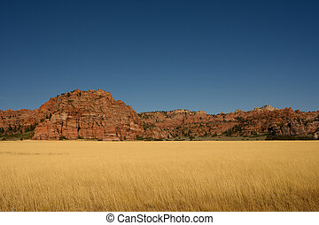 Tall Grasses Cover Field Near Rocky Outcropping on Kolob ...