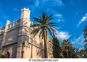 Tall Palm Tree Beside Old Mediterranean Building