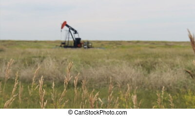 Tall Prairie Grass With Oil Pump - A faithful oil pump works...