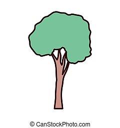 tall tree isolated icon