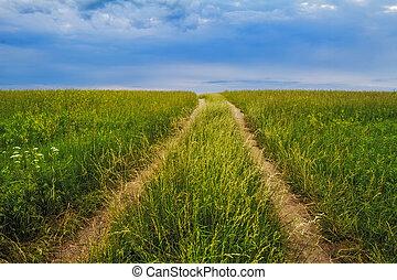 tallgrass, prairie, chemin