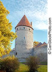 tallinn., antigas, city., estonia.