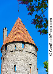 tallinn, antigas, tower., estónia