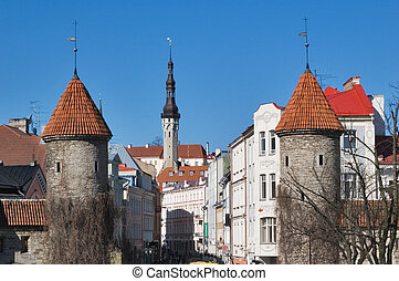 Tallinn. Estonia. Street Viru