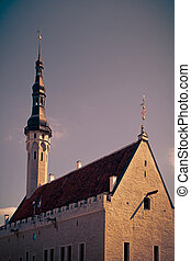 The medieval building of Guildhall in Tallinn, Estonia Tinted image in retro style