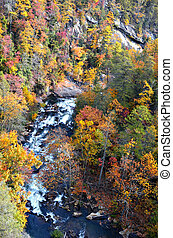 Tallulah River Gorge in Autumn