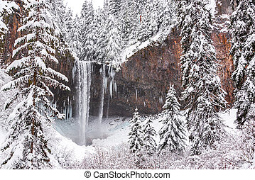 Tamanawas Falls in Winter