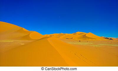 tamezguida, argelia, resumen, parque, formación, roca,...