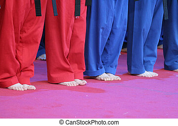 tanítás, kung fu