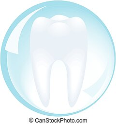 tand, is, beschermd, door, een, glas bal