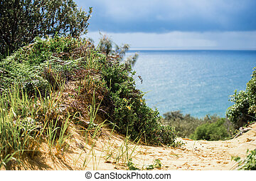 Tangalooma Island beach in Moreton Bay. - View from...