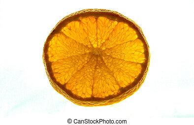 tangerina, isolado, luminoso, fruta, fundo, backlit, branca