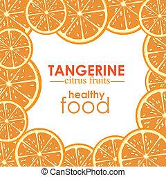 tangerine citrus fruit over white background vector illustration