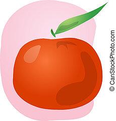 Tangerine fruit illustration