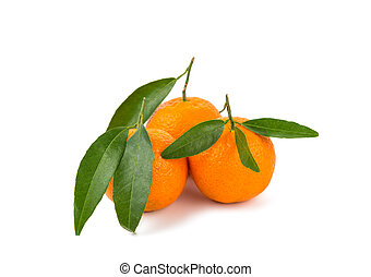 tangerine isolated