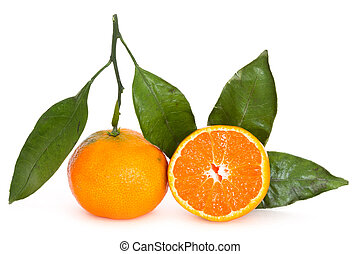 tangerine over white background