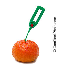 tangerine Transportation