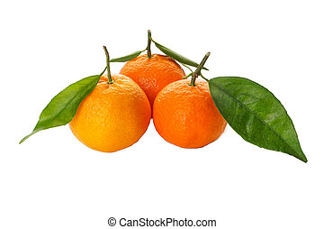 Tangerines fruits with fresh leaves isolated on a white background