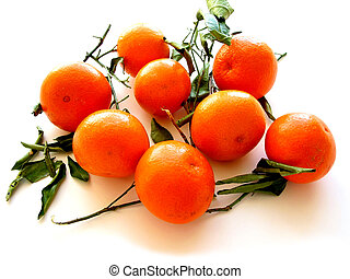 Tangerines with leaves on white 1