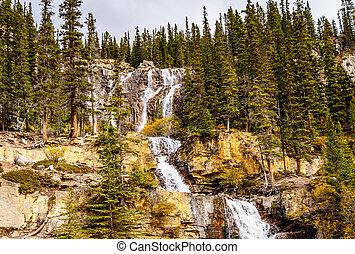 Tangle Falls in Jasper Park
