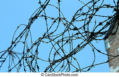 tangle of barbed wire to delimit the area not to be crossed