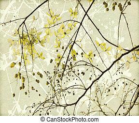 Tangled Golden Shower Tree