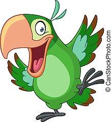 taniec, papuga