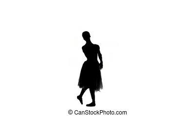 taniec, sylwetka, tło, battements, zrobienie, grands, podstęp, biały, młody, balerina