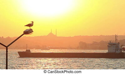Tanker ship sails at sunset in Istanbul.
